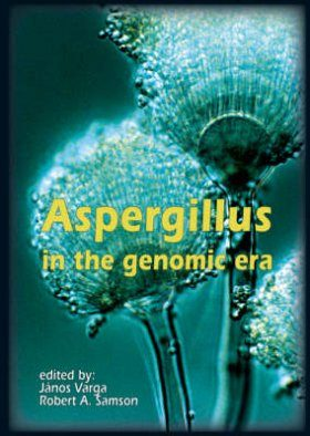 Aspergillus in the Genomic Era