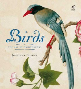 Birds: The Art of Ornithology (Mini-Edition)