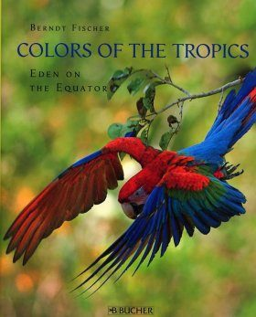 Colors of the Tropics