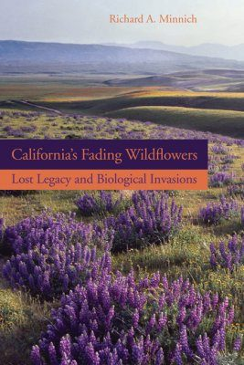 California's Fading Wildflowers