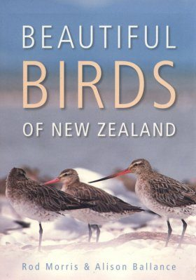 Beautiful Birds of New Zealand