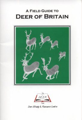 A Field Guide to Deer of Britain