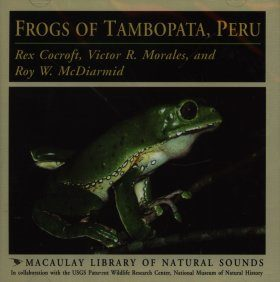 Frogs of Tambopata, Peru