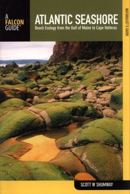 The Naturalist's Guide to the Atlantic Seashore