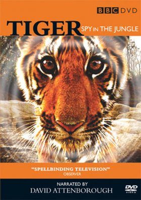 Tiger - Spy in the Jungle (Region 2 & 4)