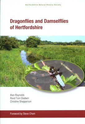 Dragonflies and Damselflies of Hertfordshire