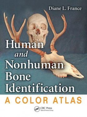 Human and Nonhuman Bone Identification