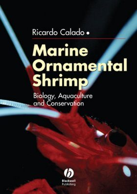 Marine Ornamental Shrimp