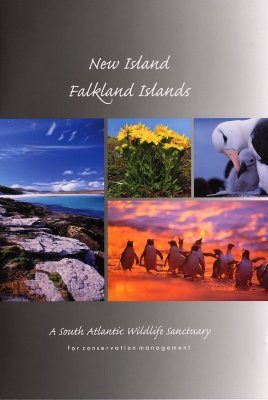 New Island, Falkland Islands