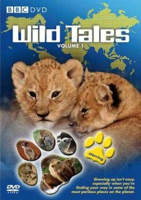 Wild Tales, Volume 1 - DVD (Region 2)