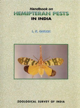 Handbook on Hemipteran Pests in India