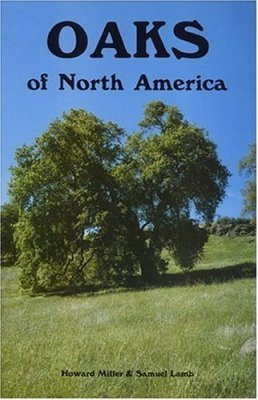 Oaks of North America