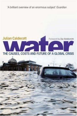 Water: The Causes, Costs and Future of a Global Crisis