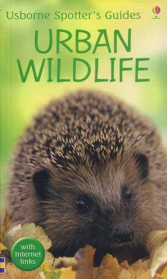 Usborne Spotter's Guide: Urban Wildlife