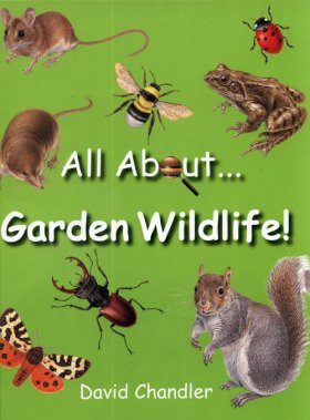 All About Garden Wildlife (Region 2 & 4)