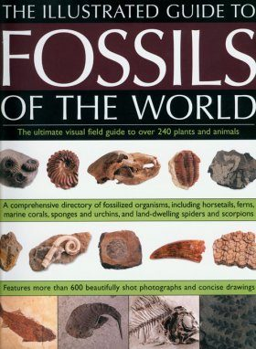 An Illustrated Guide to the Fossils of the World