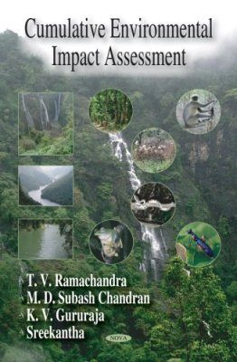 Cumulative Environmental Impact Assessment
