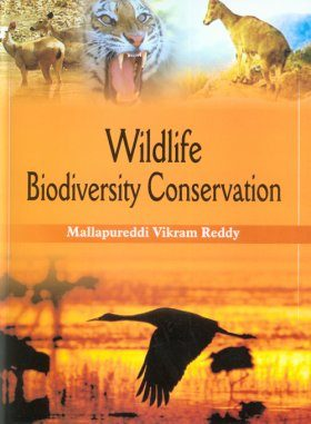 Wildlife Biodiversity Conservation