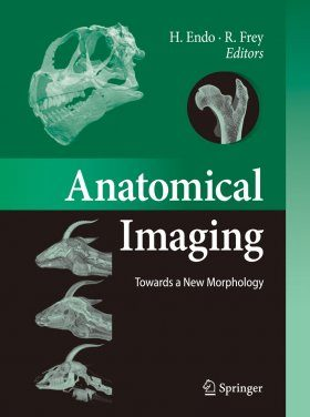 Anatomical Imaging