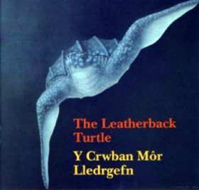 The Leatherback Turtle / Y Crwban Mor Lledrgefn