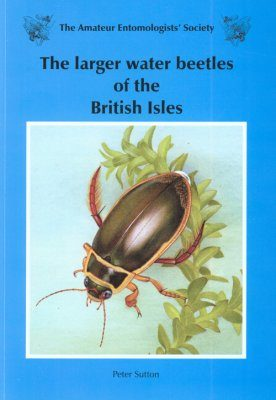 The Larger Water Beetles of the British Isles