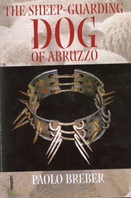 The Sheep-Guarding Dog of Abruzzo