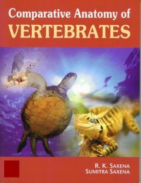 Comparative Anatomy of Vertebrates