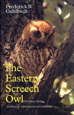 The Eastern Screech Owl