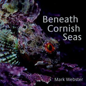 Beneath Cornish Seas