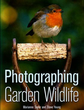Photographing Garden Wildlife