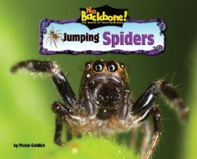Jumping Spiders (No Backbone! the World of Invertebrates)