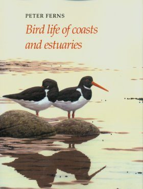 Bird Life of Coasts and Estuaries