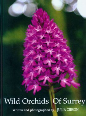 Wild Orchids of Surrey