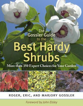 The Gossler Guide to the Best Hardy Shrubs
