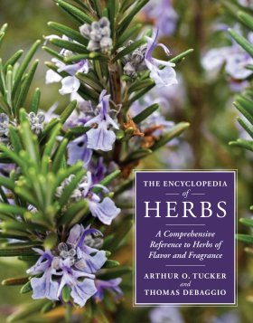 The Encyclopedia of Herbs