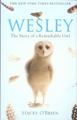 Wesley: The Story of a Remarkable Owl