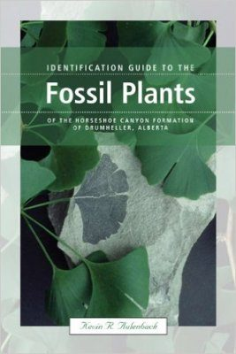 Identification Guide to the Fossil Plants of the Horseshoe Canyon Formation of Drumheller, Alberta