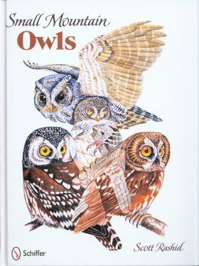 Small Mountain Owls