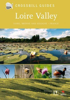 Crossbill Guide: Loire Valley - Loire, Brenne and Sologne
