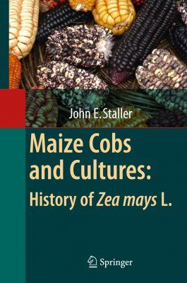 Maize Cobs and Cultures