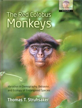 The Red Colobus Monkeys