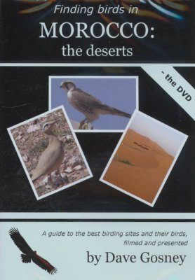 Finding Birds in Morocco: The Deserts - DVD (Region 2)