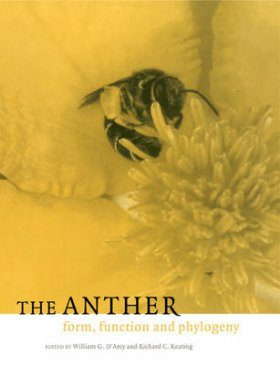 The Anther: Form, Function and Phylogeny