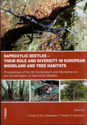Saproxylic Beetles