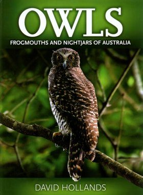 Owls, Frogmouths and Nightjars of Australia