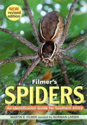 Filmer's Spiders