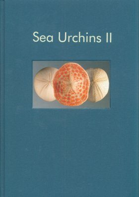 Sea Urchins II