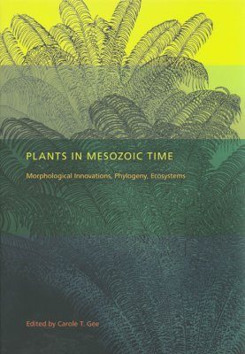Plants in Mesozoic Time