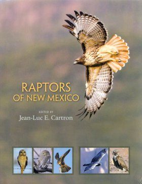 Raptors of New Mexico
