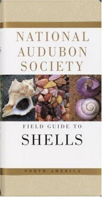 National Audubon Society Field Guide to North American Seashells